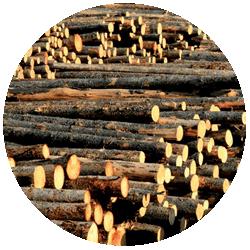 2-logs-250×250