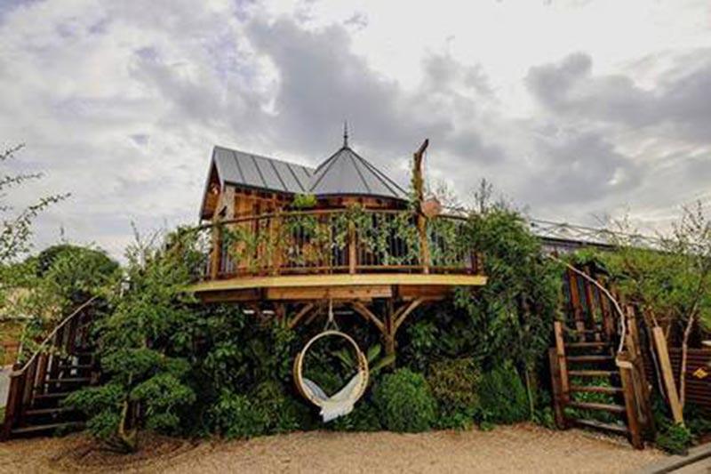 PEFC Treehouse